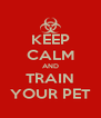 KEEP CALM AND TRAIN YOUR PET - Personalised Poster A4 size