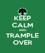 KEEP CALM AND TRAMPLE OVER - Personalised Poster A4 size