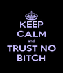 KEEP CALM and TRUST NO BITCH - Personalised Poster A4 size