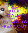 KEEP CALM AND TRY NOT TO FREAK OUT - Personalised Poster A4 size