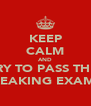 KEEP CALM AND TRY TO PASS THE  FREAKING EXAMS  - Personalised Poster A4 size