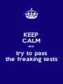 KEEP CALM and  try to pass the freaking tests - Personalised Poster A4 size
