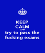 KEEP CALM AND try to pass the fucking exams - Personalised Poster A4 size
