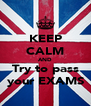 KEEP CALM AND Try to pass your EXAMS - Personalised Poster A4 size