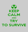 KEEP CALM AND TRY TO SURVIVE - Personalised Poster A4 size