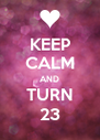 KEEP CALM AND TURN 23 - Personalised Poster A4 size