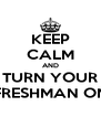 KEEP CALM AND TURN YOUR FRESHMAN ON - Personalised Poster A4 size