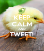 KEEP CALM AND TWEET!  - Personalised Poster A4 size