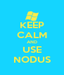 KEEP CALM AND USE NODUS - Personalised Poster A4 size