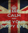 KEEP CALM AND USE YOUR PUPPY EYES - Personalised Poster A4 size