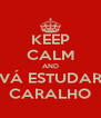 KEEP CALM AND VÁ ESTUDAR CARALHO - Personalised Poster A4 size