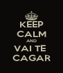 KEEP CALM AND VAI TE  CAGAR - Personalised Poster A4 size