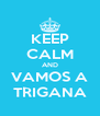 KEEP CALM AND VAMOS A TRIGANA - Personalised Poster A4 size
