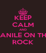 KEEP CALM AND VANILE ON THE ROCK - Personalised Poster A4 size