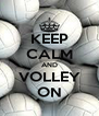 KEEP CALM AND VOLLEY ON - Personalised Poster A4 size