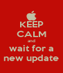 KEEP CALM and wait for a new update - Personalised Poster A4 size
