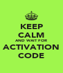 KEEP CALM AND WAIT FOR ACTIVATION CODE - Personalised Poster A4 size