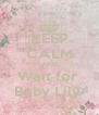 KEEP CALM AND Wait for  Baby Lily  - Personalised Poster A4 size
