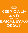 KEEP CALM AND WAIT FOR BAKALEYA6 DEBUT - Personalised Poster A4 size