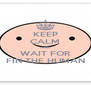 KEEP CALM AND WAIT FOR FIN THE HUMAN - Personalised Poster A4 size