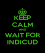 KEEP CALM AND WAIT FOR INDICUD - Personalised Poster A4 size