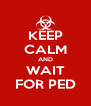 KEEP CALM AND WAIT FOR PED - Personalised Poster A4 size