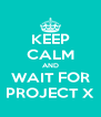KEEP CALM AND WAIT FOR PROJECT X - Personalised Poster A4 size