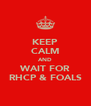 KEEP CALM AND WAIT FOR RHCP & FOALS - Personalised Poster A4 size