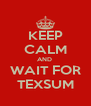 KEEP CALM AND  WAIT FOR TEXSUM - Personalised Poster A4 size