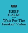 KEEP CALM AND Wait For The Freakin' Video - Personalised Poster A4 size