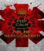 KEEP CALM AND WAIT FOR THE NEXT CONCERT! - Personalised Poster A4 size