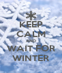 KEEP CALM AND WAIT FOR WINTER - Personalised Poster A4 size