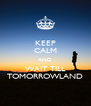 KEEP CALM AND WAIT TILL TOMORROWLAND - Personalised Poster A4 size