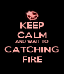 KEEP CALM AND WAIT TO CATCHING FIRE - Personalised Poster A4 size