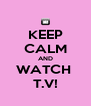 KEEP CALM AND WATCH  T.V! - Personalised Poster A4 size