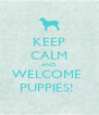 KEEP CALM AND WELCOME  PUPPIES!  - Personalised Poster A4 size
