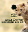 KEEP CALM AND WHAT ARE THE DIFFERENT BIG CATS - Personalised Poster A4 size
