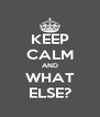 KEEP CALM AND WHAT ELSE? - Personalised Poster A4 size