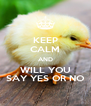 KEEP CALM AND WILL YOU SAY YES OR NO - Personalised Poster A4 size