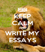 KEEP CALM AND WRITE MY ESSAYS - Personalised Poster A4 size