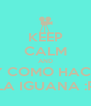 KEEP CALM AND Y COMO HACE LA IGUANA :P - Personalised Poster A4 size