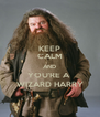 KEEP CALM AND YOU'RE A  WIZARD HARRY - Personalised Poster A4 size