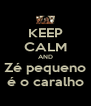 KEEP CALM AND Zé pequeno é o caralho - Personalised Poster A4 size