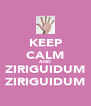 KEEP CALM AND ZIRIGUIDUM ZIRIGUIDUM - Personalised Poster A4 size