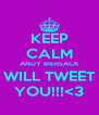 KEEP CALM ANDY BIERSACK WILL TWEET YOU!!!<3 - Personalised Poster A4 size
