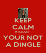 KEEP CALM ATLEAST  YOUR NOT A DINGLE - Personalised Poster A4 size