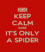 KEEP CALM BABE IT'S ONLY A SPIDER - Personalised Poster A4 size