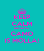 KEEP CALM BACAUSE CAMO IS MOLLA! - Personalised Poster A4 size