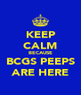 KEEP CALM BECAUSE BCGS PEEPS ARE HERE - Personalised Poster A4 size
