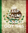 KEEP CALM BECAUSE CANELO GOT THIS - Personalised Poster A4 size